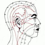 Meridianen-hoofd